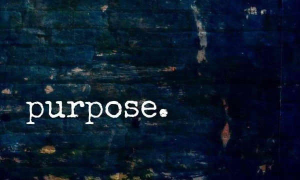 purpose in business, vision in business, mission as mission